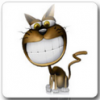 Funny Cat Live Wallpaper Pro