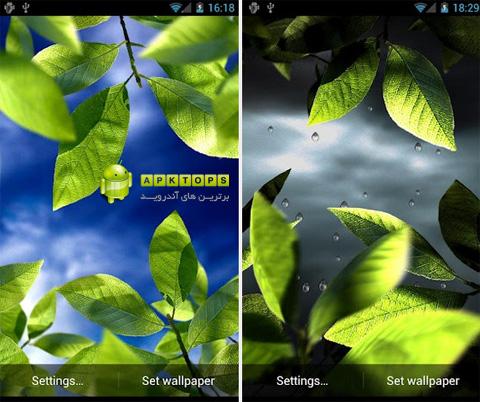 دانلود لایو والپیپیر فوق العاده زیبای برگ های تازه برای آندروید Fresh Leaves Live Wallpaper 1.5