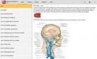 Dorland's-Illustrated-Medical-1