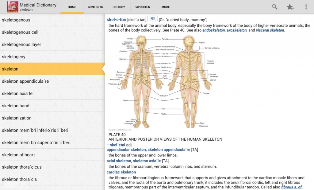 Dorland's-Illustrated-Medical-3