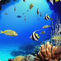 Beautiful Aquarium Live HD 1.0