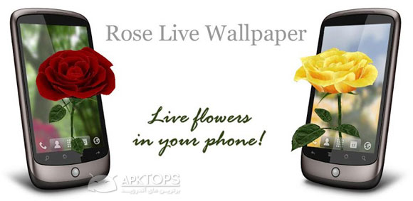 3D-Rose-Live-Wallpaper-3.4