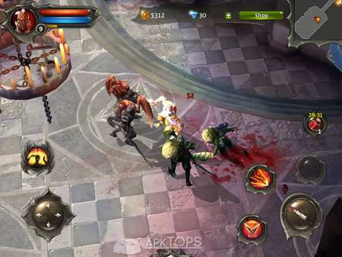 Dungeon Hunter 4 1.1.0  (2)