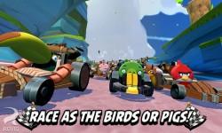 Angry-Birds-Go!-4