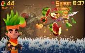 Fruit-Ninja-2-2