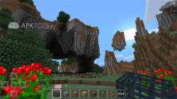 Minecraft - Pocket Edition 0.9.1 (5)