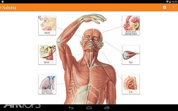 Sobotta-Anatomy-Atlas-1