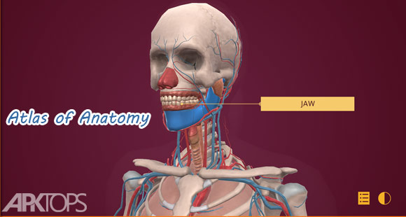 Atlas-of-Anatomy