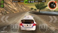 Rally Racer Dirt (5)