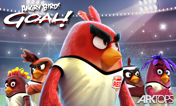 Angry-Birds-Goal!