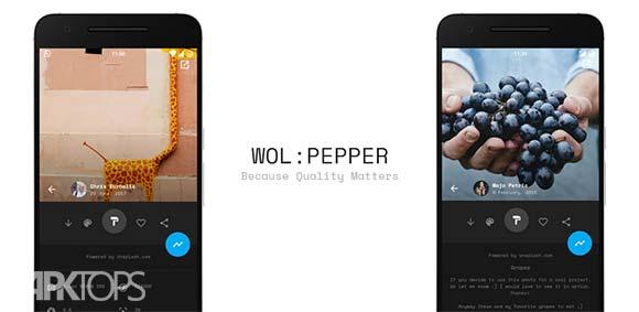 Wolpepper The Wallpaper App دانلود برنامه تصاویر پس زمینه