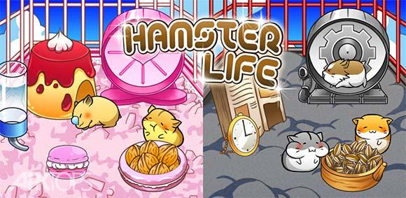 Hamster Life دانلود بازی معتادکننده زندگی همستر
