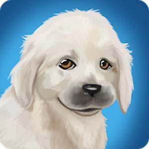 PetWorld Animal Shelter v5.5 دانلود بازی جذاب پناهگاه حیوانات خانگی + مود اندروید