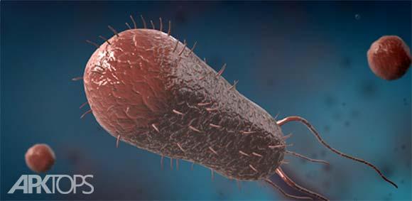 Bacteria interactive educational VR 3D دانلود برنامه اموزشی مدل سه بعدی باکتری ها