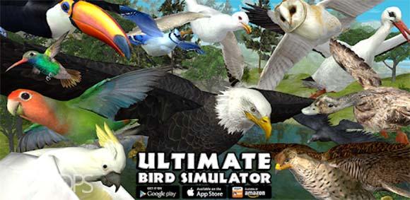 Ultimate Bird Simulator دانلود بازی شبیه سازی پرنده